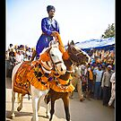 HOLLA MOHALLA-2 by manumint