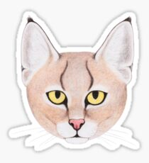 Jungle Cat Glossy Sticker