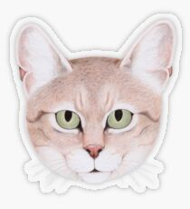 African Wildcat Transparent Sticker