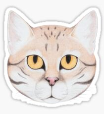 Black-footed Cat Glossy Sticker