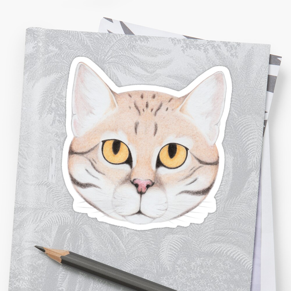Black-footed Cat Stickers