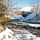 Winter at Ingleton Waterfalls Trail by Sue Knowles