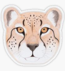 African Cheetah Transparent Sticker