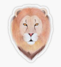 African Lion Transparent Sticker