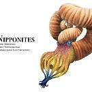 Nipponites by Liam Elward