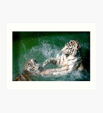 Tigers in play Art Print