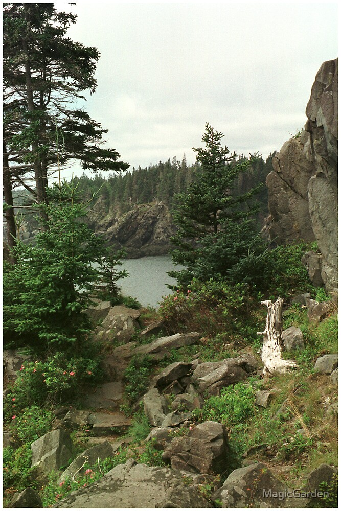 Lubec Cove by MagicGarden