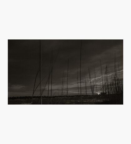 Old Pier  Photographic Print