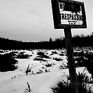 No Trespassing by Trenton Purdy