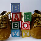 Baby Boy by Sharon A. Henson