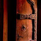 Mysterious Door, Amber Fort, Jaipur, India by Barbara  Brown