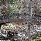 The Bridge by jewelsofawe