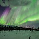 Wickersham Dome and the Aurora by Aaron Lojewski