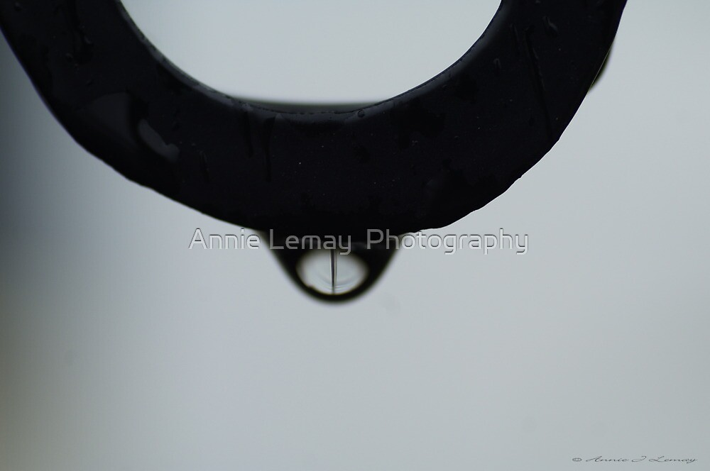 Drop Gone By by Annie Lemay  Photography