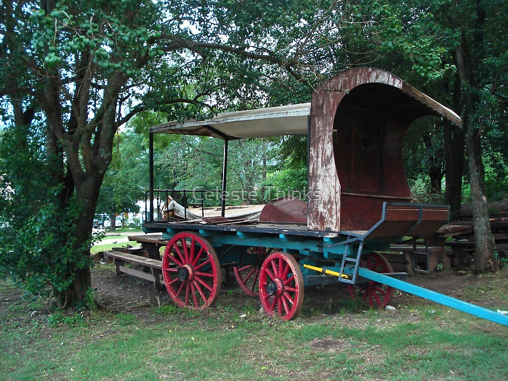 The Cart by Celeste Thinks