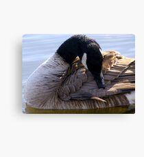 Goose Shapes Canvas Print