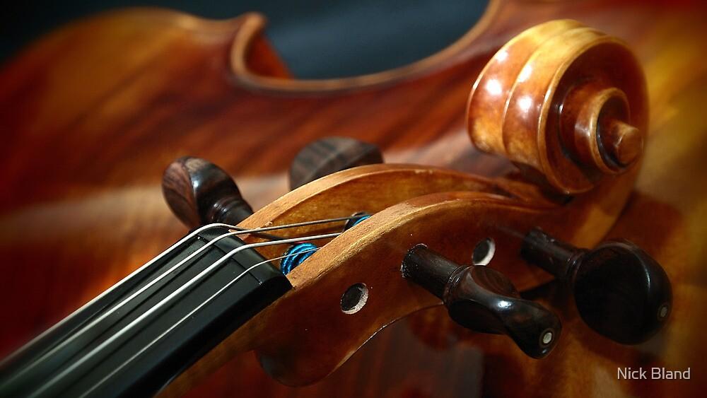 Fine Art Violins by Nick Bland
