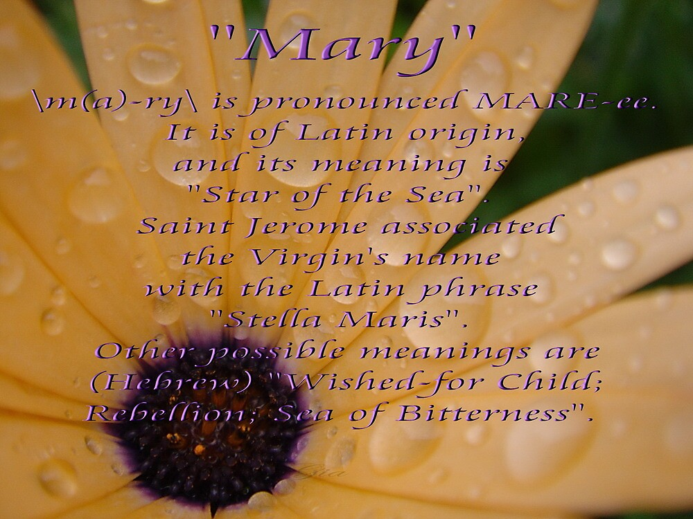 """Mary"" by Gail Jones"