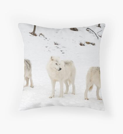 Three Bad Wolves Throw Pillow
