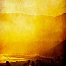 Gold Coast I by Anne  McGinn
