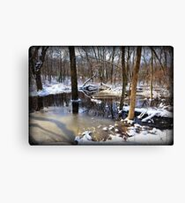 Snow By The Creek Canvas Print