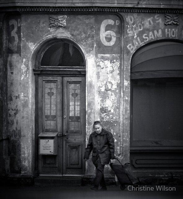The European by Christine Wilson