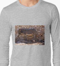 Donkey in the Shade Long Sleeve T-Shirt