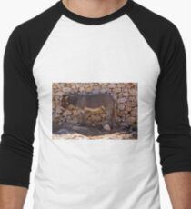 Donkey in the Shade Men's Baseball ¾ T-Shirt