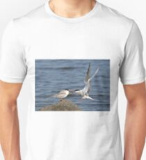 Feeding Time - Common Terns, Ottawa, Ontario Unisex T-Shirt