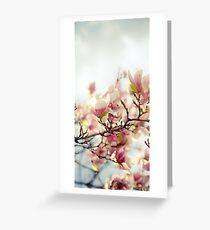 Evening Magnolia Greeting Card