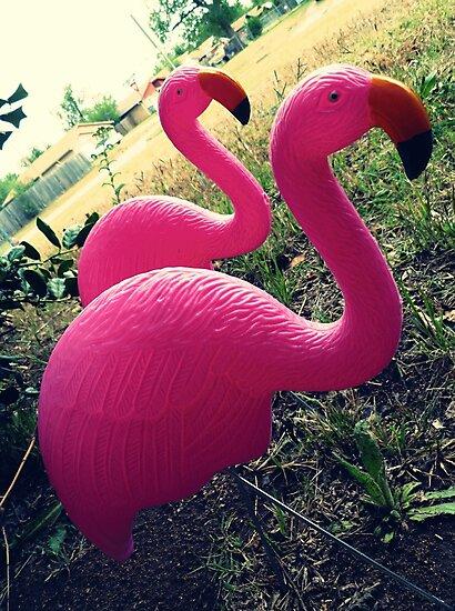 04-26-11:  I Have Flamingos!!!! by Margaret Bryant