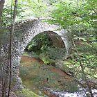 Buck Hill Falls Arched Bridge  by clizzio