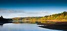 The Magic of Dartmoor by DonDavisUK