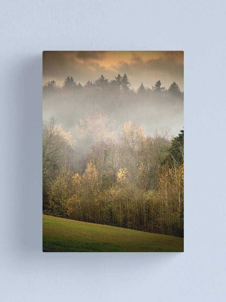 Alternate view of Park Trees in Fall Canvas Print