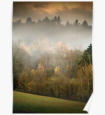Park Trees in Fall Poster