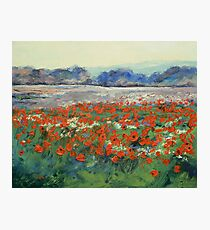 Poppies in Flanders Fields Photographic Print