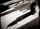Black Cat by Mojca Savicki