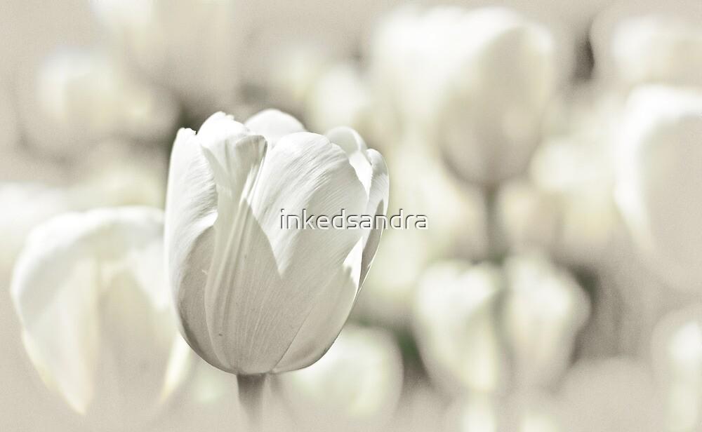 It's spring again... by inkedsandra