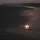 FOLLOW THE LIGHT by June Ferrol