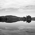 reflected by sara montour