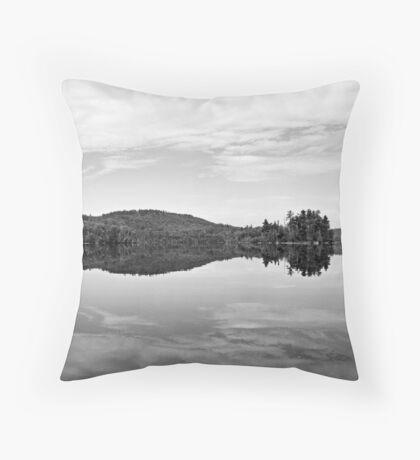 reflected Throw Pillow