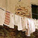 Washing day by Richard Pitman