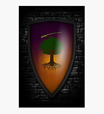 Ser Duncan the Tall: The Hedge Knight Variant Photographic Print