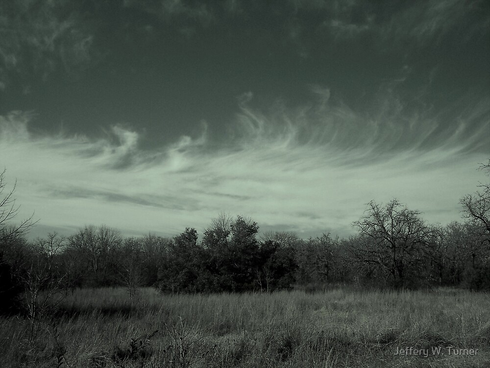 A Horizon Of Trees And Clouds by Jeffery W. Turner