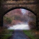 Winter walk in Scotland by Jeremy Lavender Photography