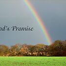 God's Promise by Glenna Walker