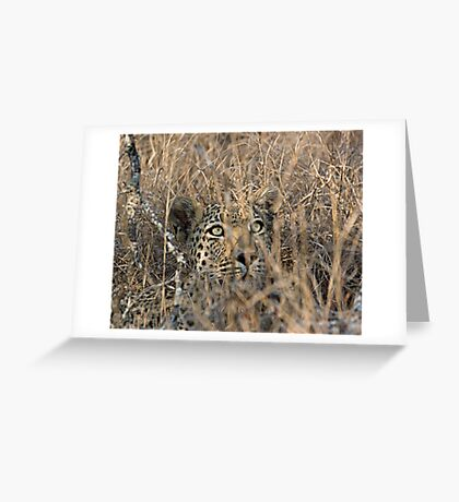 I Can See You, But You Can't See Me Greeting Card
