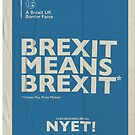 Brexit Means Brexit T-Shirt by NYET! - a Brexit UK Border Farce