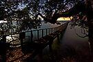 Tauranga Harbour by Michael Treloar