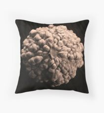 Gourd Throw Pillow